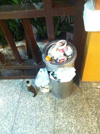 رامبوتري فيليدج إن آند بلازا: trash overflow