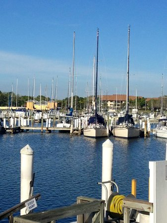 Calusa Queen Excursions: Burnt Store marina