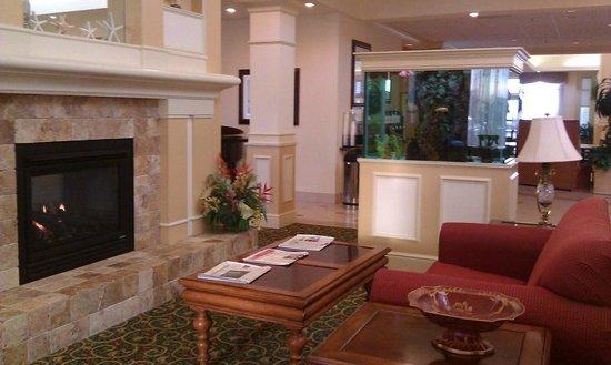 Hilton Garden Inn Outer Banks/Kitty Hawk: lobby with a fish tank