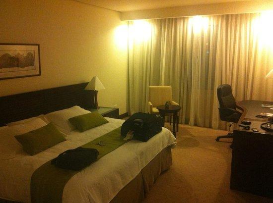 Eurobuilding Hotel & Suites Guayana: habitacion