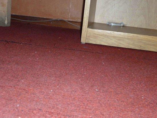 Petit Hotel : según la encargada habían aspirado la alfombra...