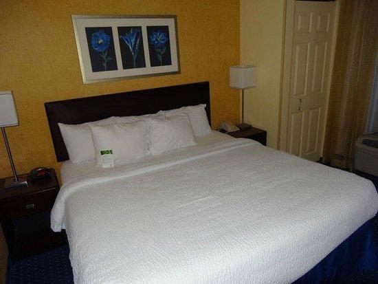 薩凡納機場萬豪春丘套房飯店照片