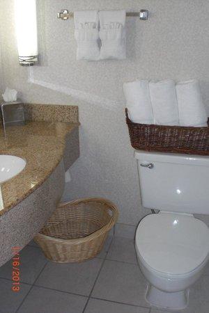 Hilton Palm Beach Airport : Clean sink area