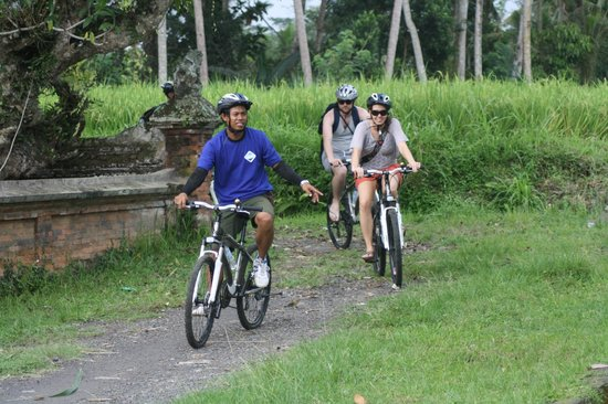 Bali Grace Cycling: rice field route