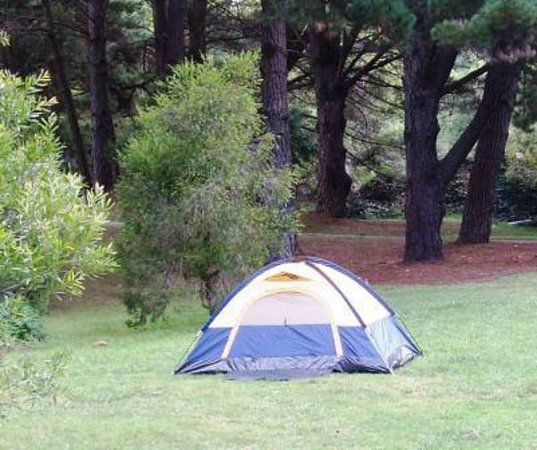 Blackheath Glen Tourist Park : Unpowered camping