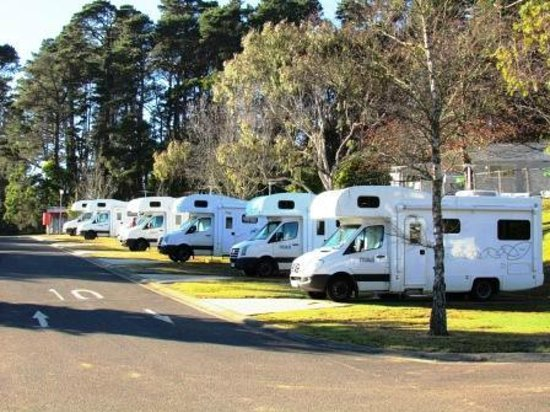 Blackheath Glen Tourist Park: Powered sites