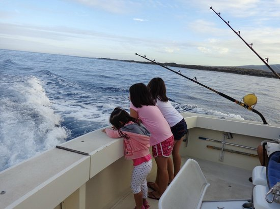Water was boiling with an opelu school picture of kona for Kona fishing charters
