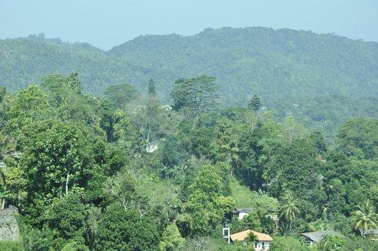 Amaara Sky Hotel Kandy: View