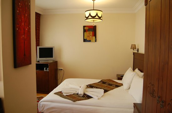 Berce Hotel: room