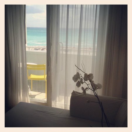 Shore Club South Beach Hotel: Morning view...