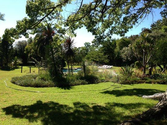 Hopefield Country House: Swimmingpool + garden