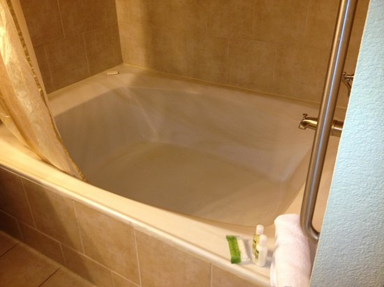 Holiday Inn Club Vacations At Desert Club Resort: Bathtub