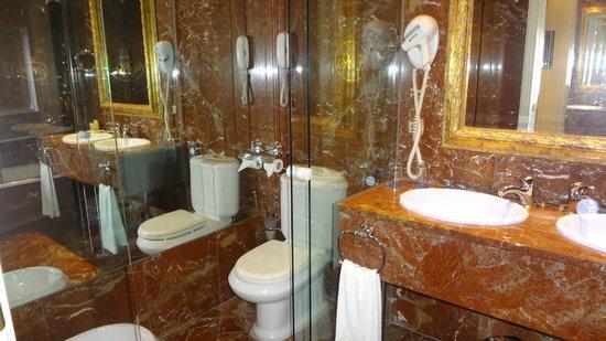 Hotel Alameda Palace: Bathroom & toilet