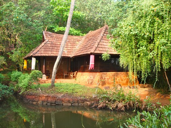 Sarovaram Ayurvedic Backwater Health Centre照片