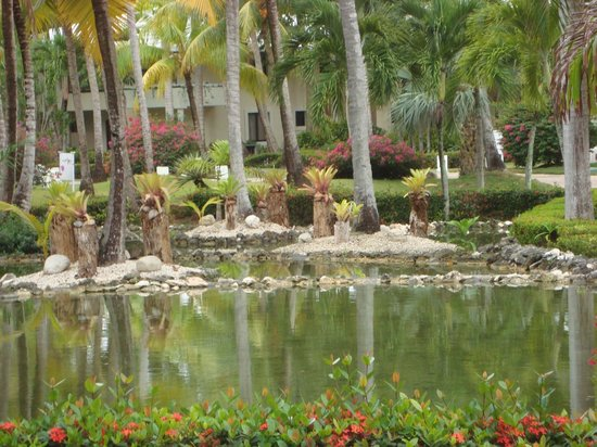 Paradisus Punta Cana: This is what the grounds looked like, right outside my room