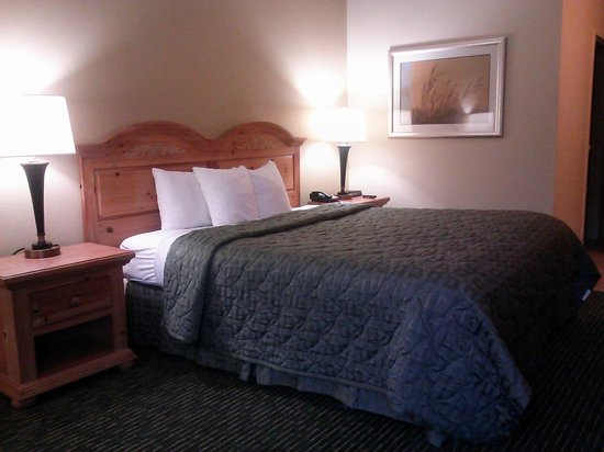 Comfort Inn : King Room