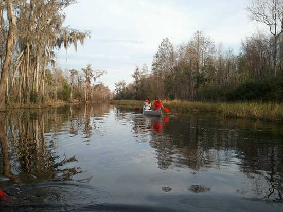 Stephen C. Foster State Park : winter silence