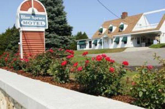 Blue Spruce Motel: Street View