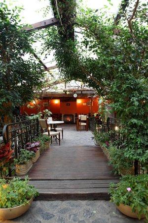 niky: Градината/The garden