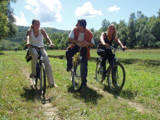 Istarske Toplice: Hotel & grounds