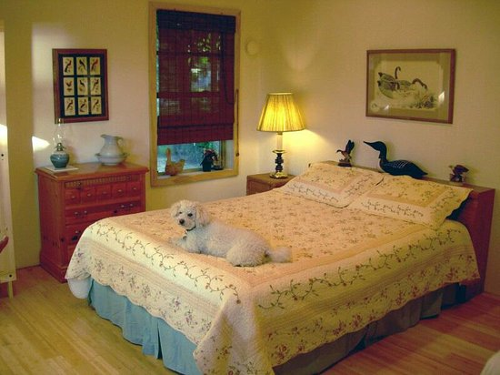 Photo of Lagoon Point Bed And Breakfast Greenbank