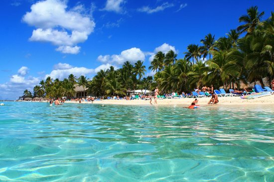 Viva Wyndham Dominicus Beach An All Inclusive Resort Spiaggia Del