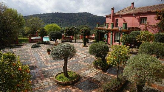 Hacienda La Herriza Hotel: Apelsinträden utanför hotellet och dess parhus/hotellrum