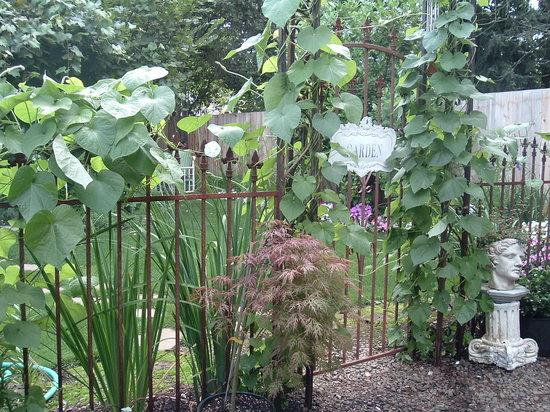 Birdwood Inn: Gardens at Birdwood