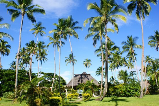Mango Bay Resort Fiji: resort with restaurant