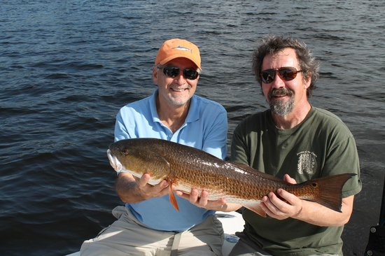 Steady action fishing charters tampa fl omd men for Fishing charters tampa