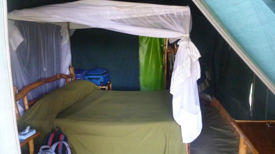 Kibo Safari Camp: Tent
