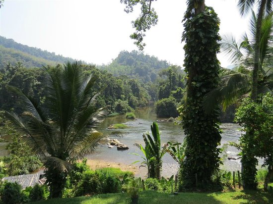 Kithulgala Rest House: view from the Rest House, looking along the river