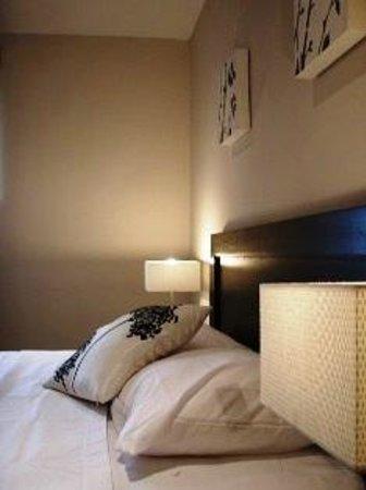 Baru Lodge: Habitaciones