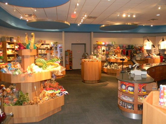 Museum Of Natural Science Gift Shop