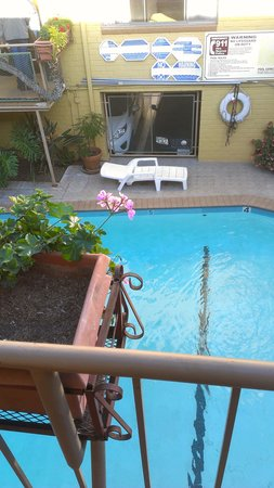 Hollywood Downtowner Inn: pool from my room