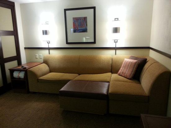 Hyatt Place Richmond Airport : Entertainment Area's Couch
