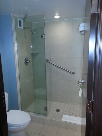 Hyatt Place Richmond Airport : Shower