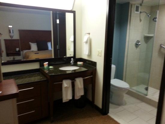 Hyatt Place Richmond Airport : Sink & Shower Area
