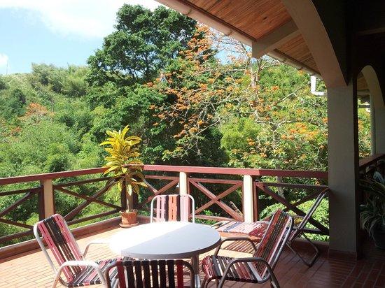 Cuffie River Nature Retreat and Eco-Lodge: Common area deck