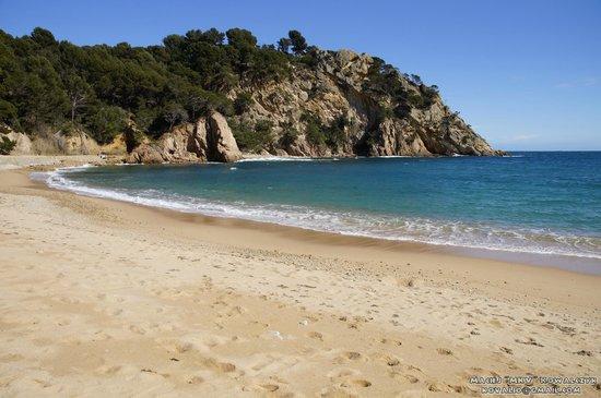 Giverola Resort: Plaża patrząc od strony hotelu