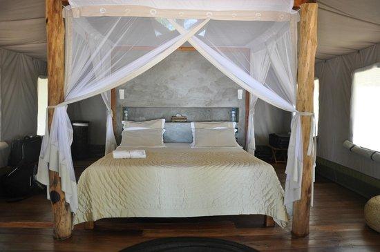 Eden Lodge: La chambre
