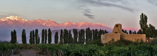 Cavas Wine Lodge: Views of the Andes