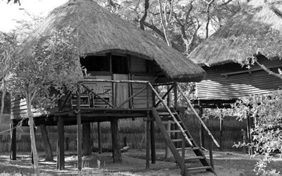 Sikumi Tree Lodge: Standard 'Tree House'