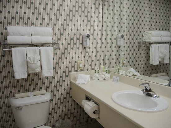 Evergreen Inn and Suites: Bathroom