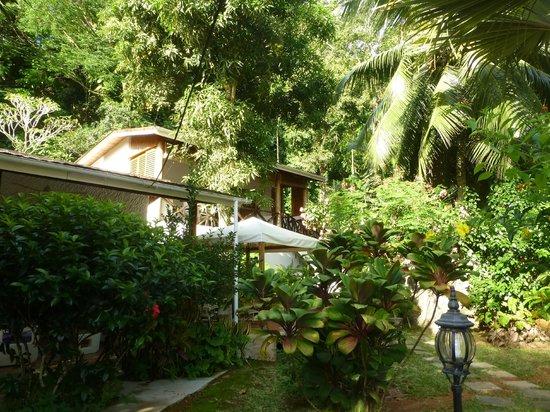 Cote Sud: Jardin et Girasole