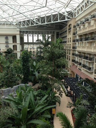 Gaylord Palms Resort & Convention Center: Atrium view from balcony