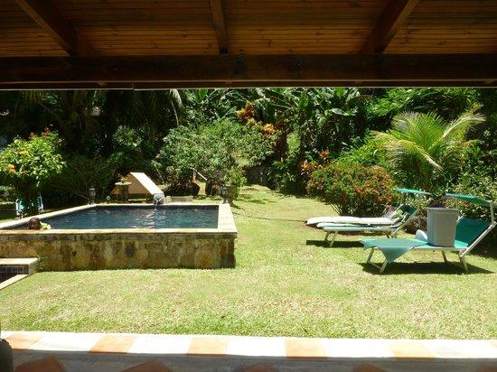 Cote Sud: Jardin et piscine