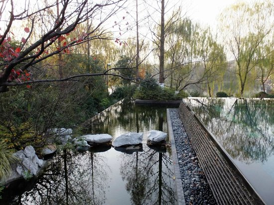 four seasons hangzhou tripadvisor