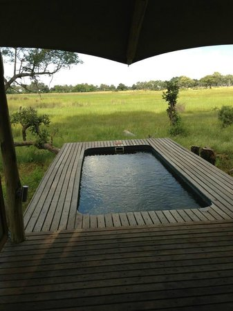 andBeyond Xaranna Okavango Delta Camp: View from our room