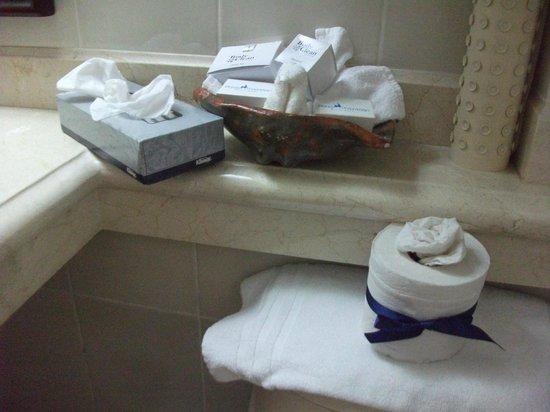 هوتل بلايا مازاتلان: Bath